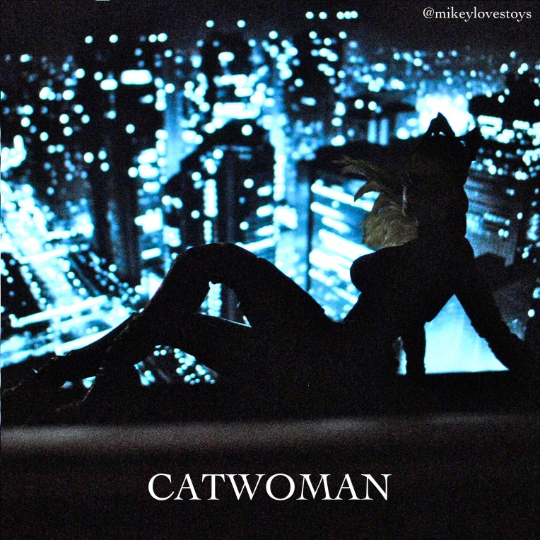 Body Catwoman Mikeylovestoys